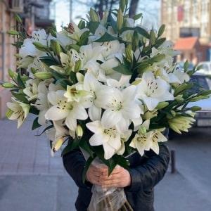 Лавандовый цвет