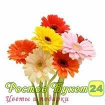Цветы с доставкой ростов на дону недорого
